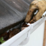 Clogged Gutters, Call Gutter Cleaning Experts in Louisville, Kentucky
