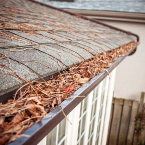 Clogged Gutters Lead to Foundation problems, get your gutters cleaned by the professionals at Gutter Junkies