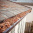 Clogged Gutters Lead to Foundation problems, get your gutters cleaned by the professionals