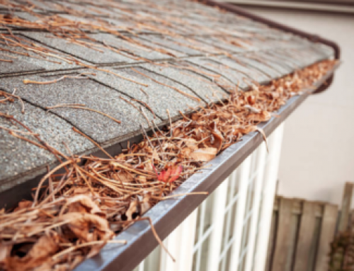 Why You Should Hire a Professional Gutter Cleaner
