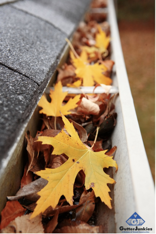 gutter cleaning do's & don'ts